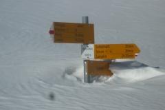Mehr_als_genug_Schnee