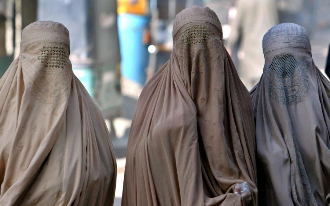 FIDS-Stellungnahme zur Burkainitiative