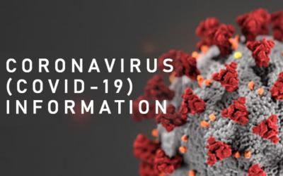 Bundesrat lockert schrittweise Massnahmen zum Schutz vor der COVID-19-Pandemie