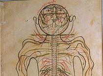 Erfolgreiche Seuchenbekämpfung durch muslimische Ärzte im Mittelalter